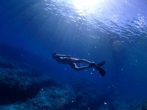 今期最高のコンディションでのSkin Diving。